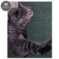 Napping Cat Puzzle