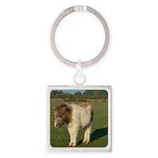 Shetland pony notecard 2 Square Keychain