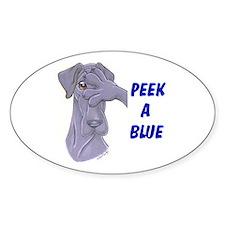 N Peek a blue Oval Decal