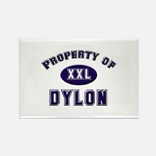 Property of dylon Rectangle Magnet