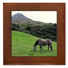 """""""Connemara 1"""" Framed Tile"""