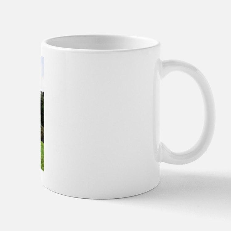 """""""Connemara 1"""" Mug"""