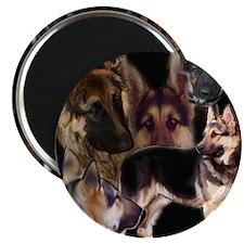 german shpherd collage Magnet
