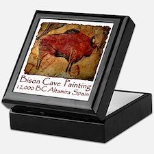 cave bison spain Keepsake Box