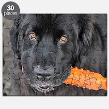 Sam4Shirt Puzzle