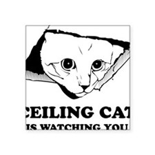 "CeilingCat Square Sticker 3"" x 3"""