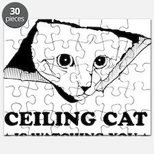 CeilingCat Puzzle