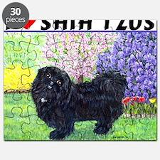 quincy_85hx10 Puzzle