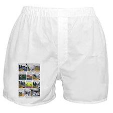 155_final Boxer Shorts