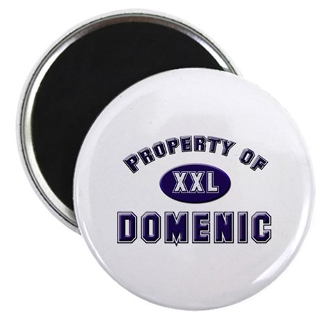 Property of domenic Magnet