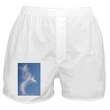 080310 Taking Flight Boxer Shorts