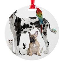 SEO_ANIMALS Ornament