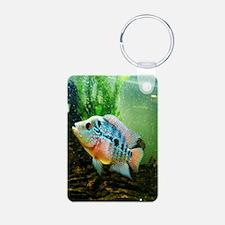 2.272x4.12_fishy Aluminum Photo Keychain