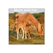 "Foal bodysuit Square Sticker 3"" x 3"""