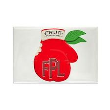 Fruit Punchlines 2 Rectangle Magnet