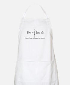 Your Math Insult BBQ Apron