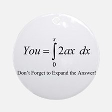 Your Math Insult Ornament (Round)