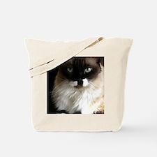 073 Tote Bag