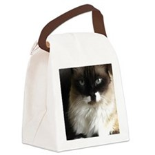 073 Canvas Lunch Bag