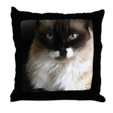 073 Throw Pillow