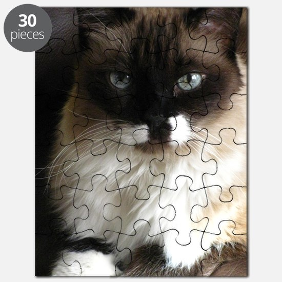 073 Puzzle