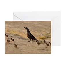 quailfamilyminiposter Greeting Card