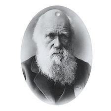 darwin Oval Ornament