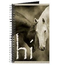 HI Journal