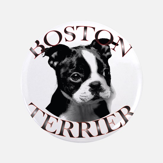 "Boston terrier 3.5"" Button"
