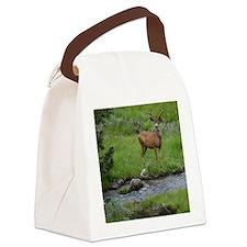 velvet2 Canvas Lunch Bag