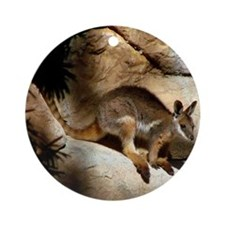 A Yellow-Footed Rock Wallaby Round Ornament