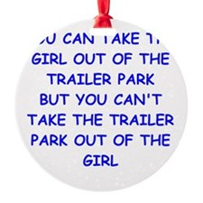 trailer park Ornament