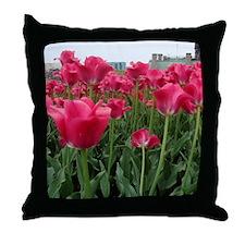 DSC06896 Throw Pillow