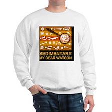 sedimentarywatson3c Sweater