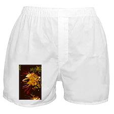11 4085 exp03 bird-of-paradise V Boxer Shorts