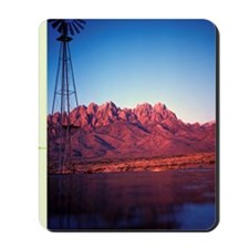 78 03 05 windmill Mousepad