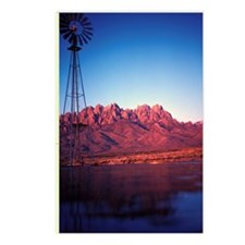 78 03 05 windmill Postcards (Package of 8)