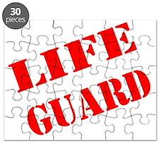 lifeguard Puzzle