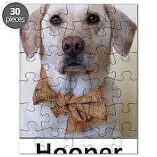 Hooper Puzzle