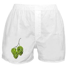 single-hop2 Boxer Shorts