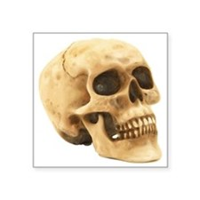 "Human Skull Symbol Square Sticker 3"" x 3"""