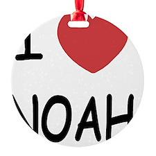 NOAH Ornament
