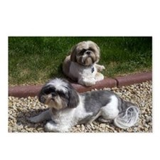 Puppies_outside Postcards (Package of 8)