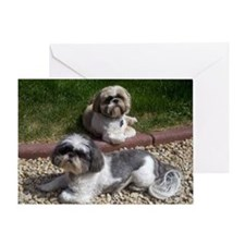 Puppies_outside Greeting Card