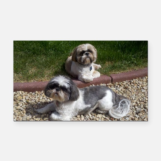 Puppies_outside Rectangle Car Magnet