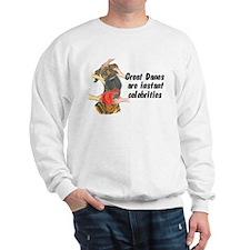 NBrdl Celebrity Sweatshirt