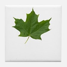 TrueNorth-greenLeaf-whiteLetters copy Tile Coaster