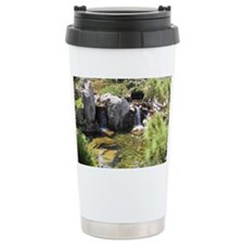 Japanese Fishpond Travel Mug