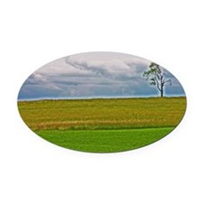 Lone Tree Oval Car Magnet
