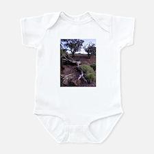 Unique Capitol reef national park Infant Bodysuit